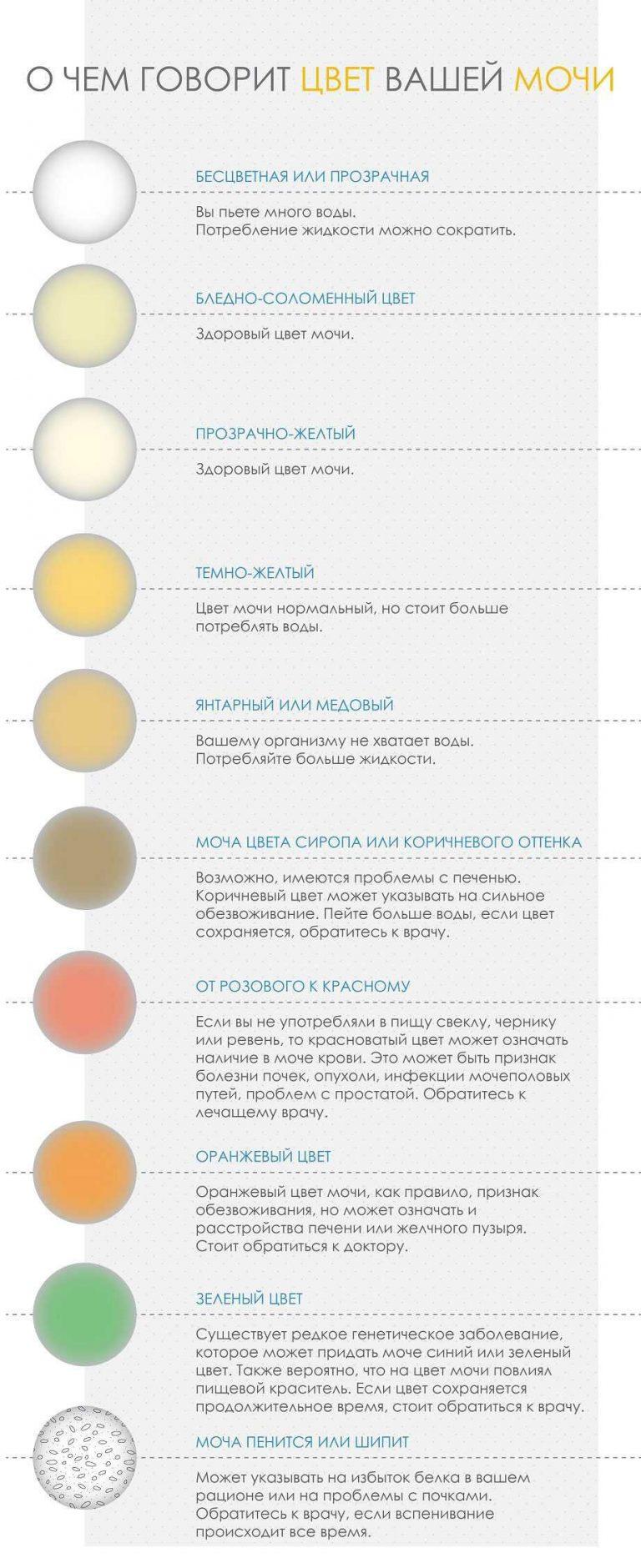 Почему меняет цвет моча после свеклы